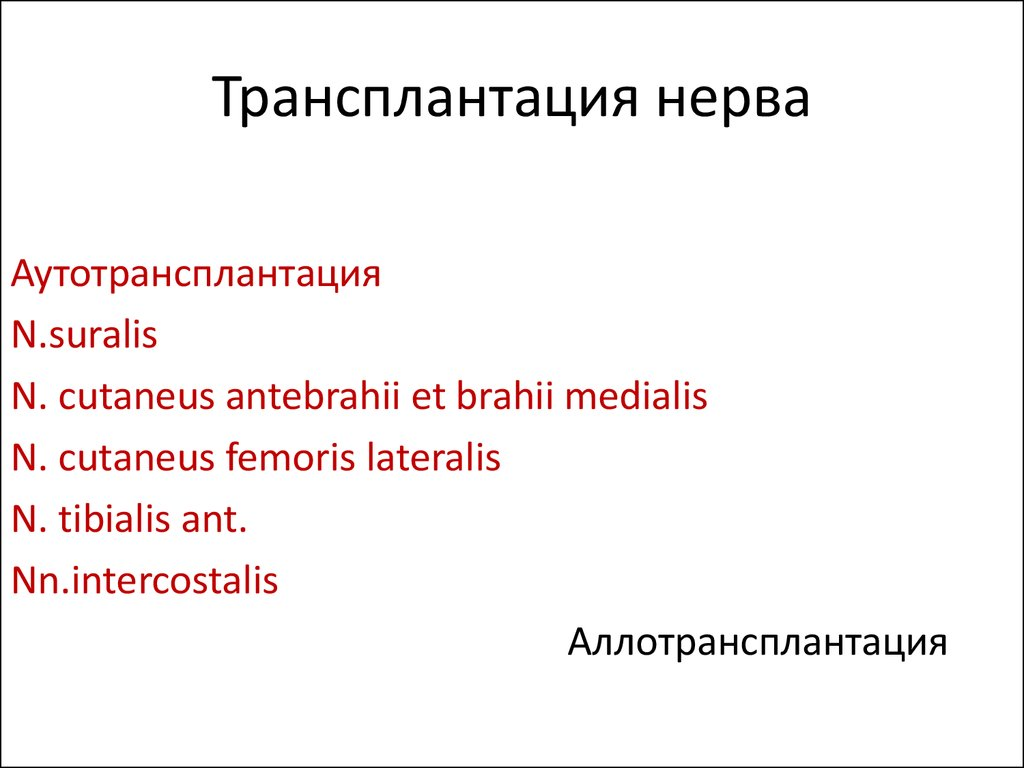 Регенерация Нерва