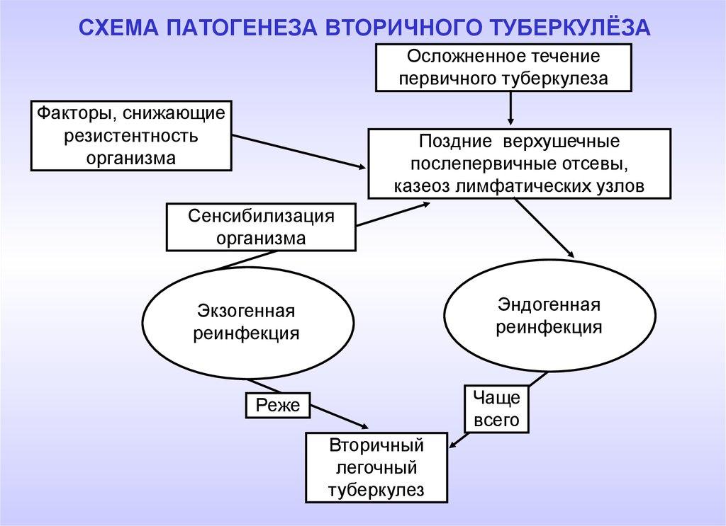 Схема выявления туберкулеза