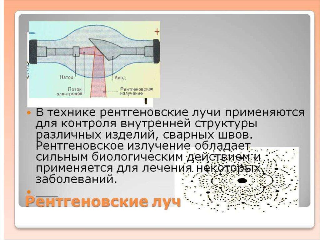 stadiya-rosta-spermatozoida