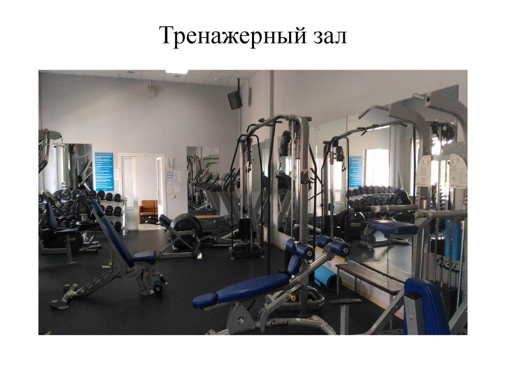 программа внеурочной деятельности основы здорового образа жизни