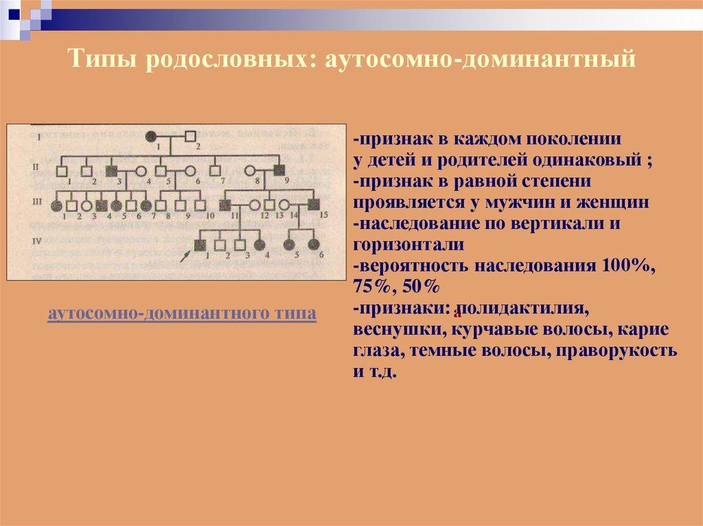 Презентация Гибридологический Метод Изучения Наследственности 9 Класс