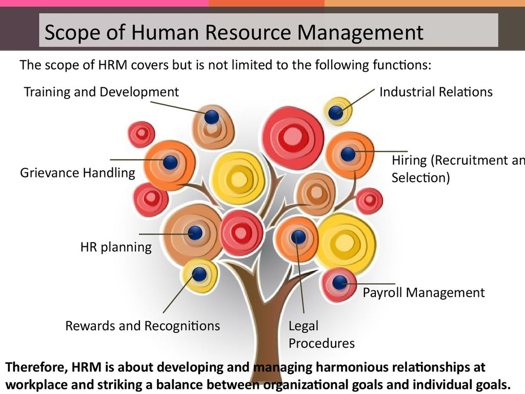 Introduction to Human Resource management - презентация онлайн