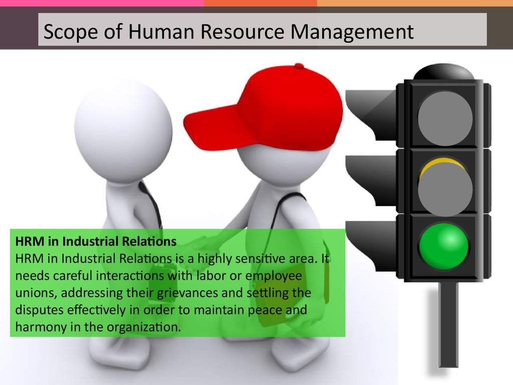role of the human resources manager in an organization essay
