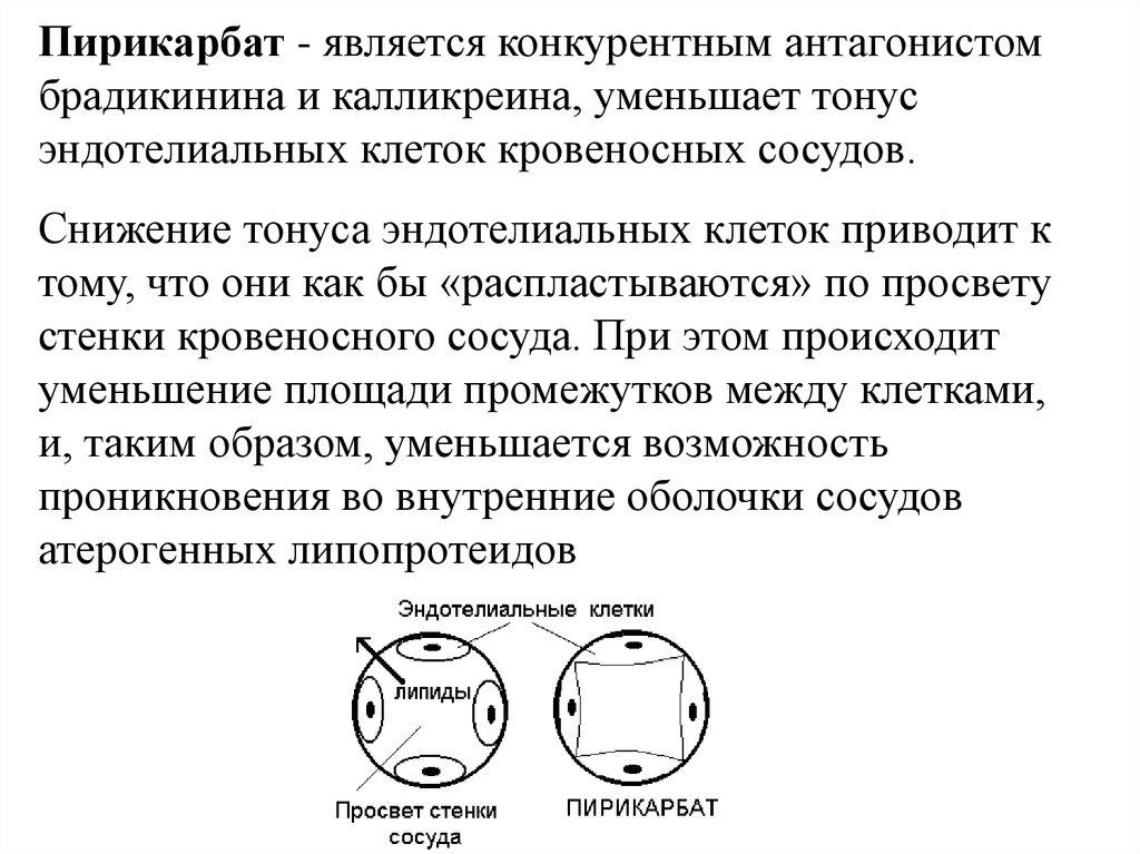 гиполипидемические препараты аторис