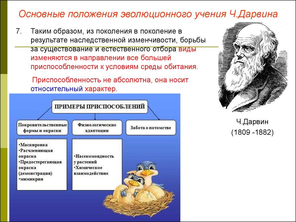 Предпосылки возникновенияучения ч дарвина общественно-экономическиеестественнонаучныеэкспедиционный материал ч дарвина