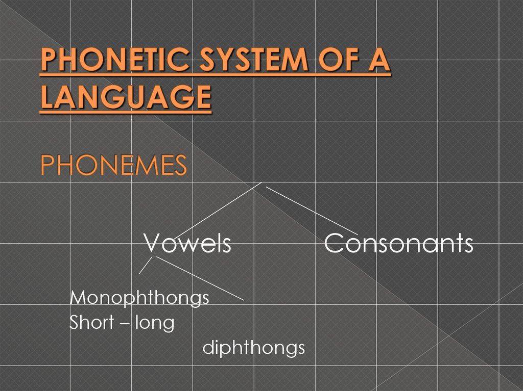 PHONETIC SYSTEM OF A LANGUAGE PHONEMES