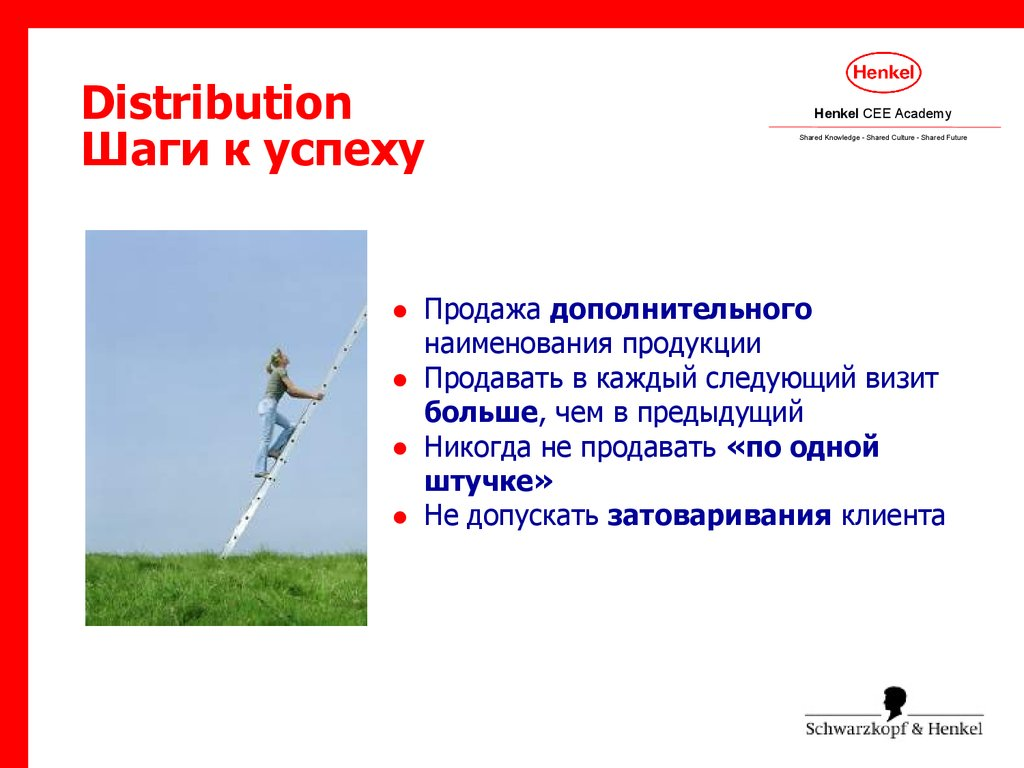 Distribution Шаги к успеху