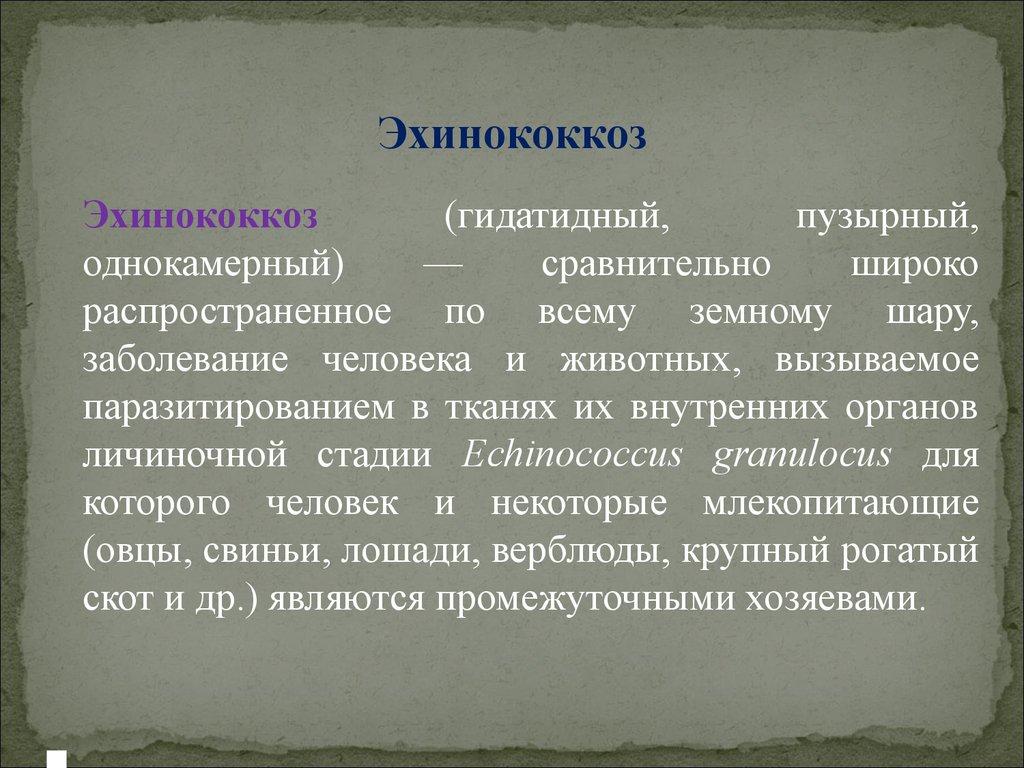 Эхоакузия