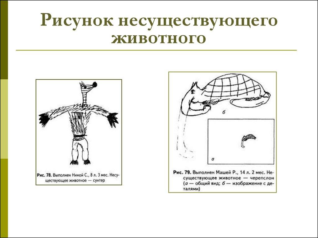 Тесты по рисунку несуществующего животного
