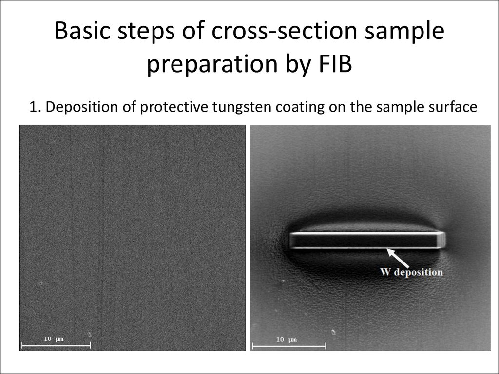 Cross Section Sample Preparation Using Focused Ion Beam