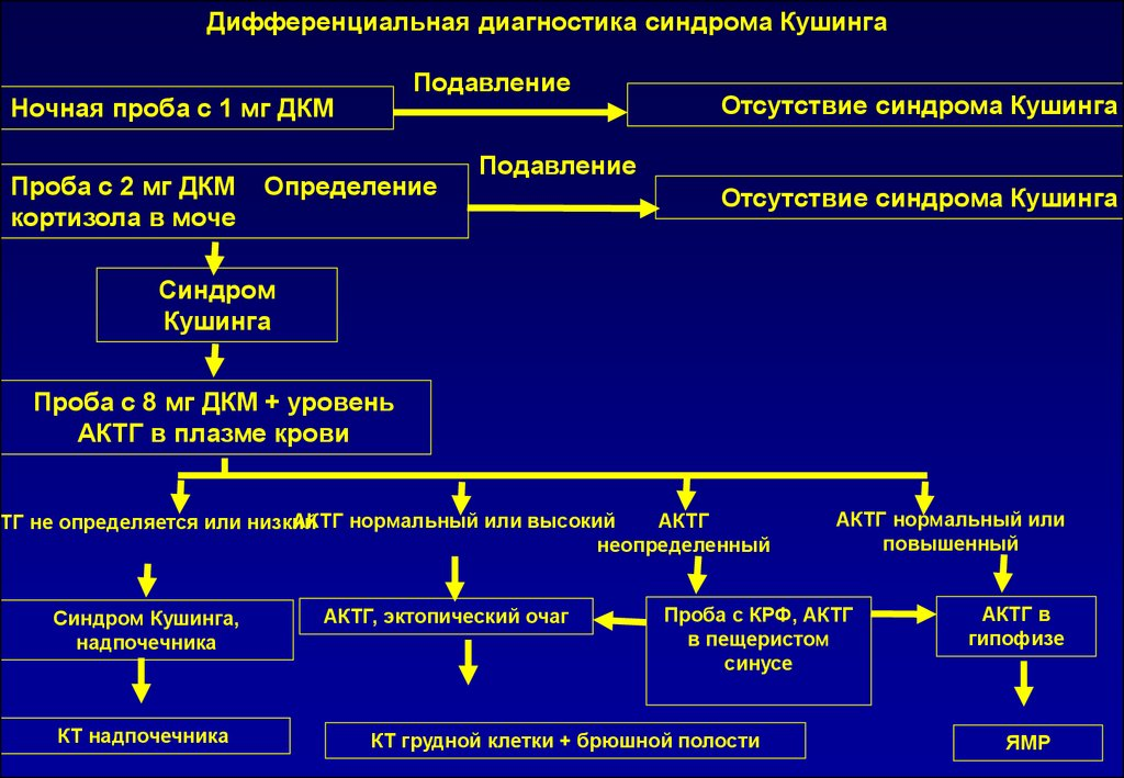 visokiy-renin-pri-arterialnoy-gipertenzii