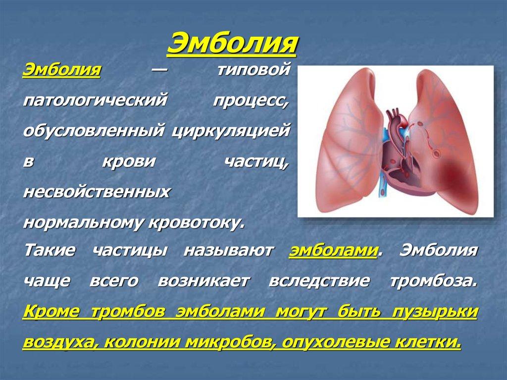 патологические процессы нефрита