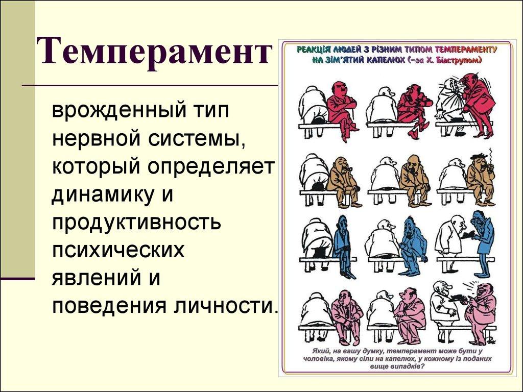 Темпераментце Бесплатное хранилище качественных снимков Темперамент дошкольный возраст курсовая