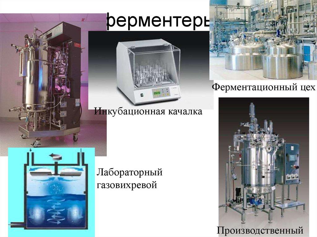 биотехнология 21 века реферат