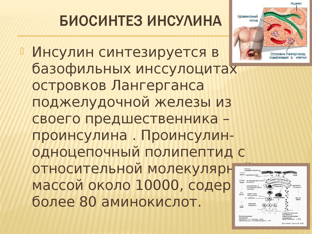Диабетическая полинейропатия степени выраженности
