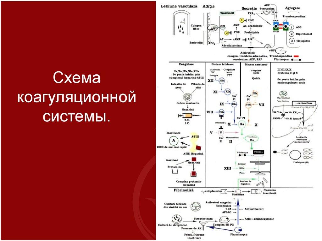 Фактор Внутренний