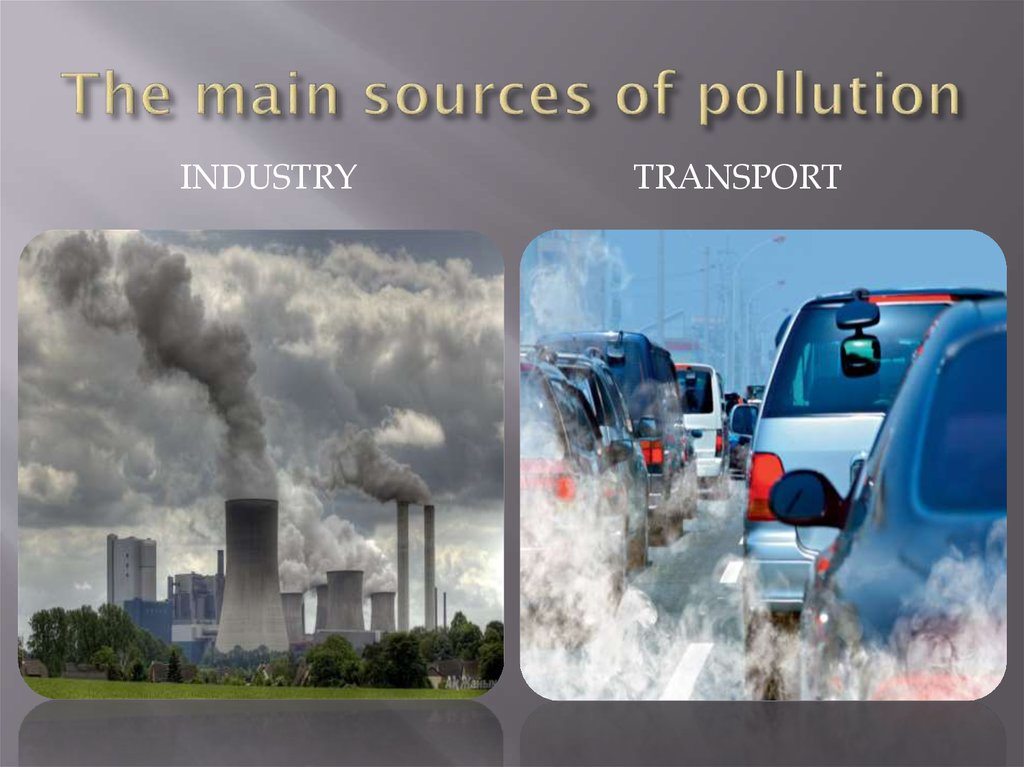 Kinds of Environmental Pollution - Sustainable Baby