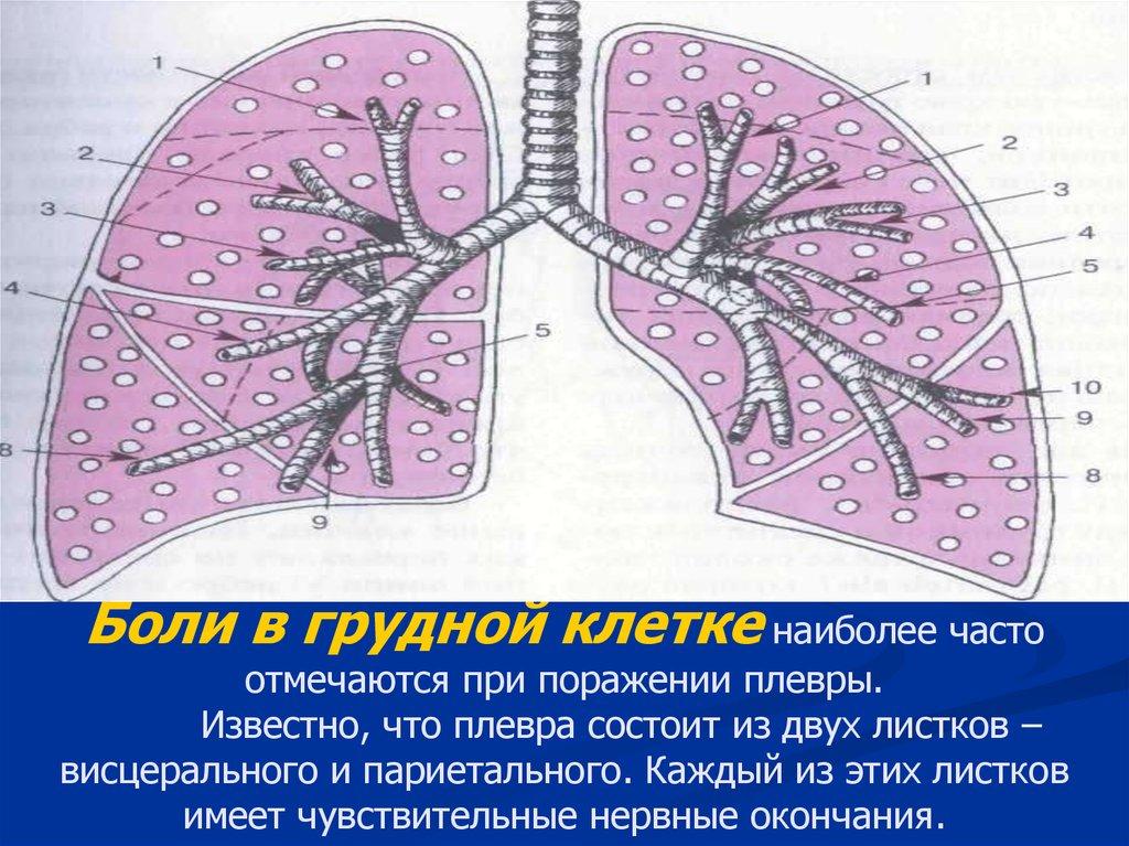 Болит под грудной клеткой беременна
