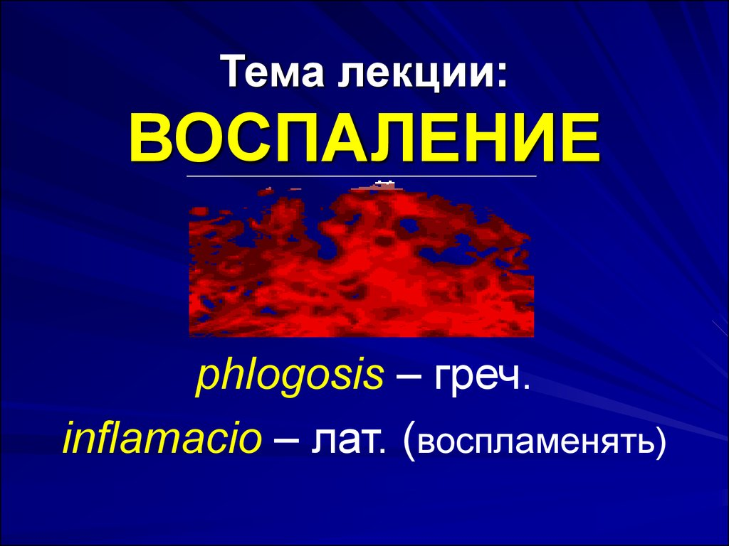 презентация на тему лизосомы