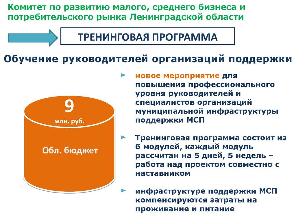 бланк бухгалтерская отчетность 2013 кнд 0710098 скачат