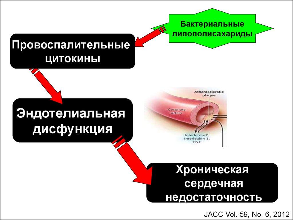 повышен билирубин и холестерин причины