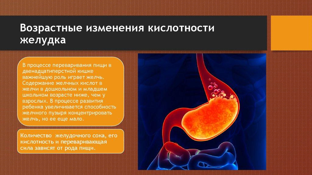 Особенности пищеварительной системы младших школьников - online presentation