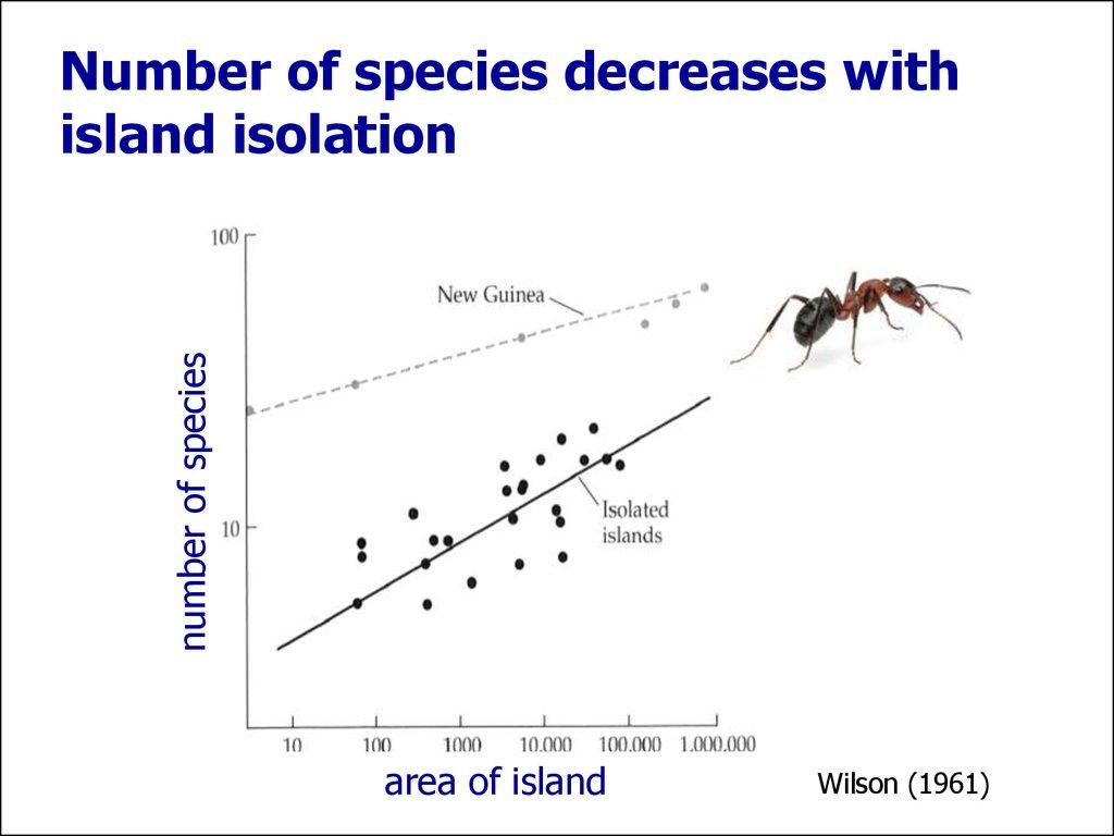 species area relationship island biogeography and evolution