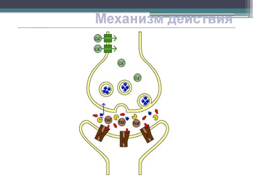 Тубокурарин