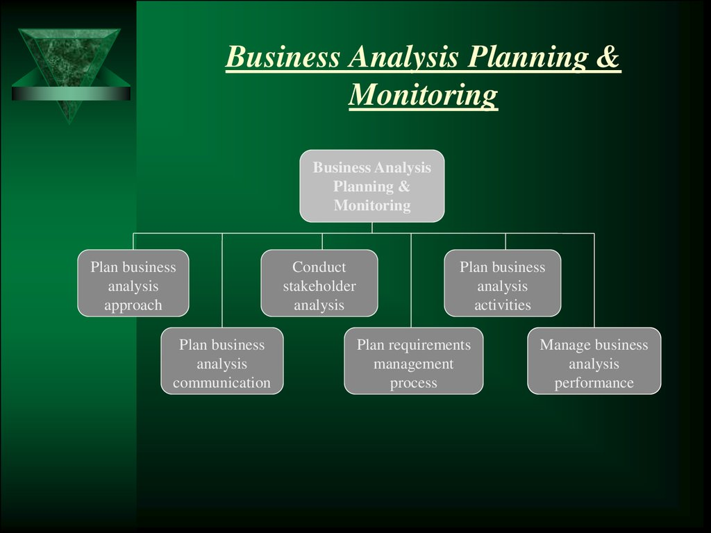 Monitoring business plan example