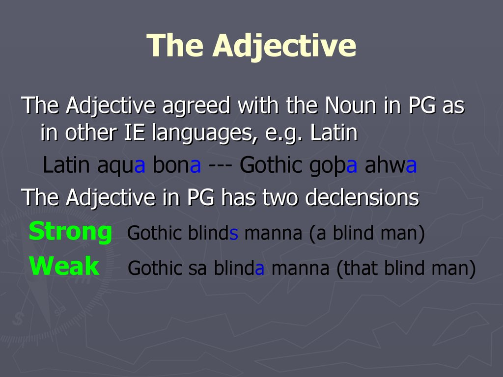 The Adjective