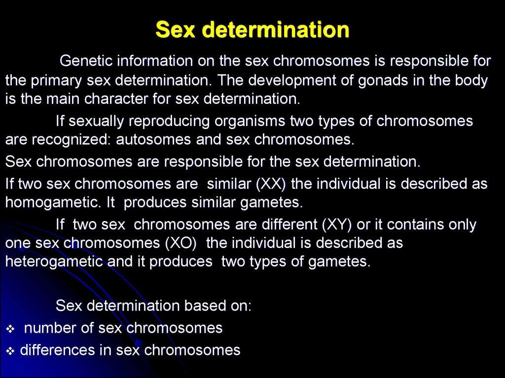 sex determination and sex chromosomes ppt slides in Arlington