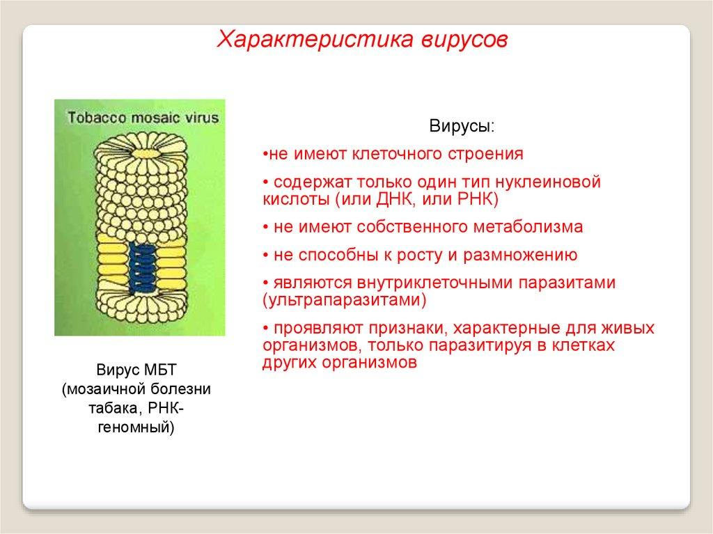 немозол от глистов для детей как принимать
