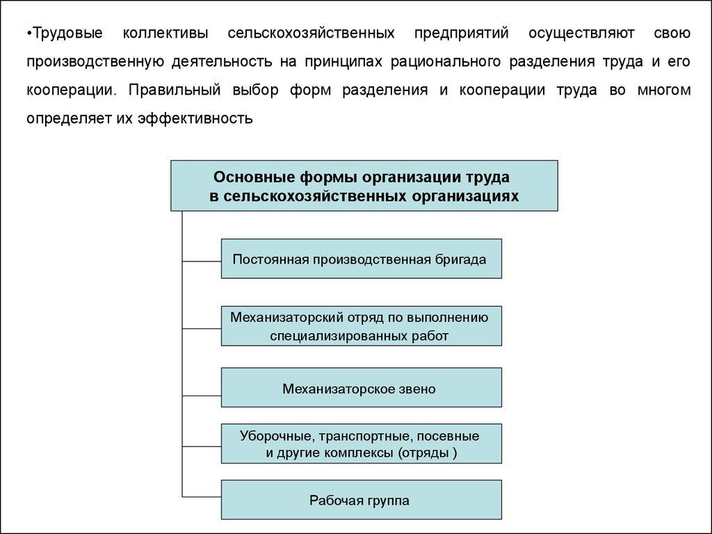 Курсовая Современные формы организации труда на предприятии  Организация трудовой деятельности реферат