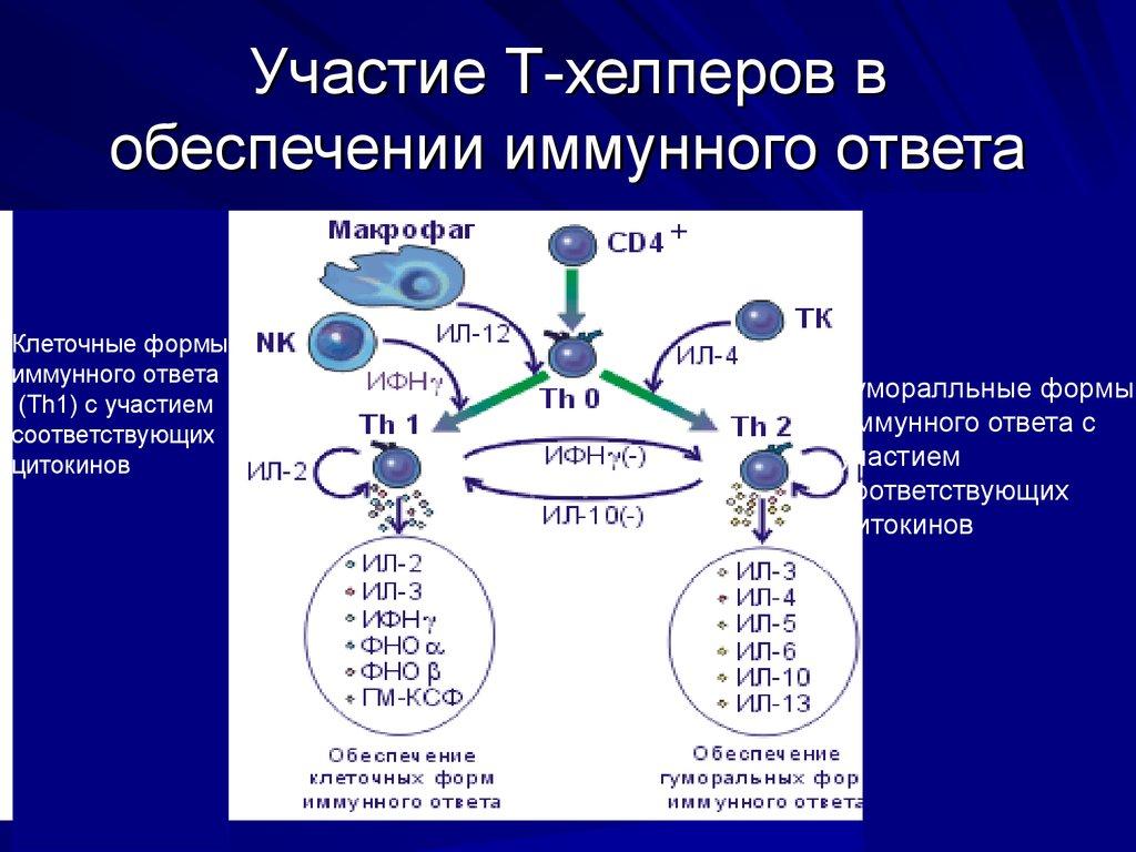 удаление паразитов из организма человека видео