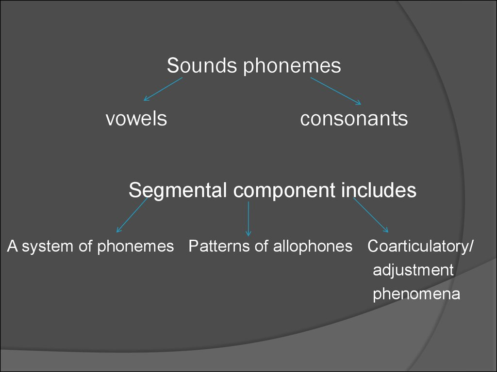 phonetics phonology and verbal structure Afforded me a personal phonetics, phonology, and morphosyntax laboratory  finally, i owe  table 27: pronominal word-verb distribution structures   133  that the mara verbal agreement paradigm reflects the onset of a  subject.
