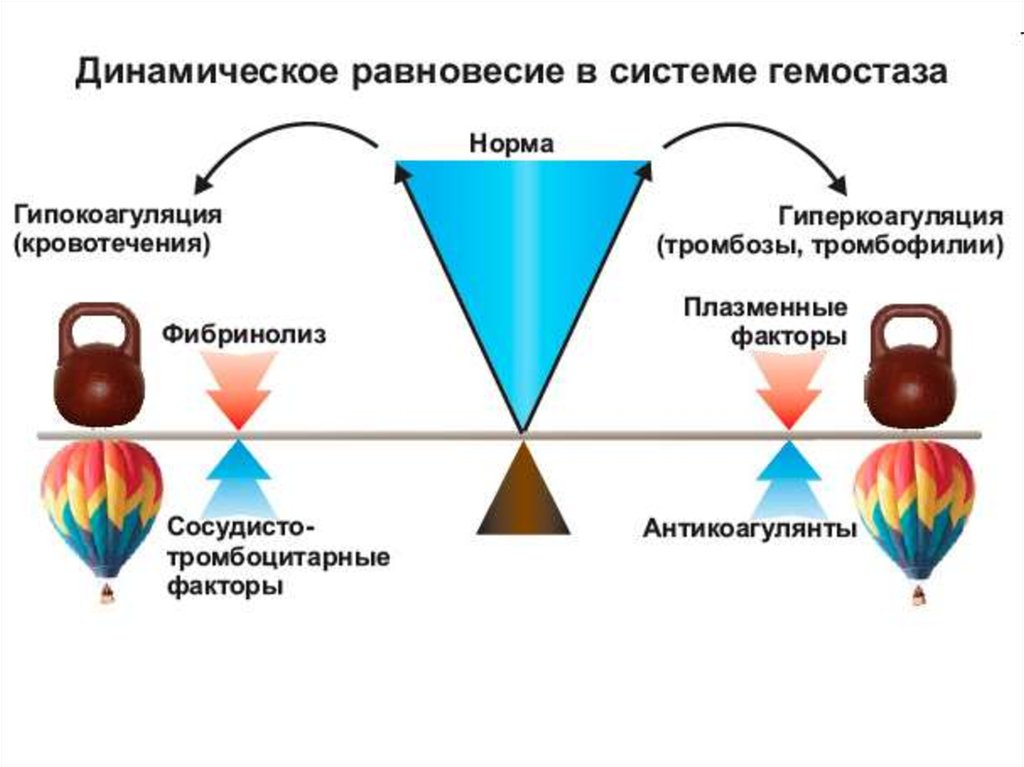 Точечные кровоизлияния на коже петехии 52