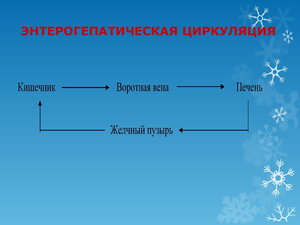 гиполипидемический препарат из группы статинов