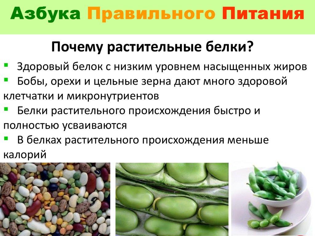 курсы правильного питания санкт петербург