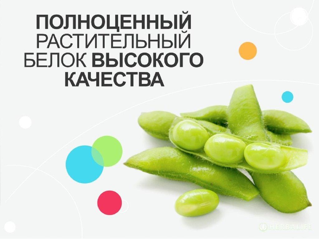 курсы правильного питания пермь