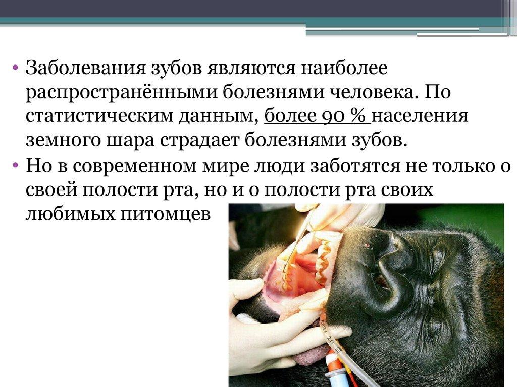 презентация история развития анестезии
