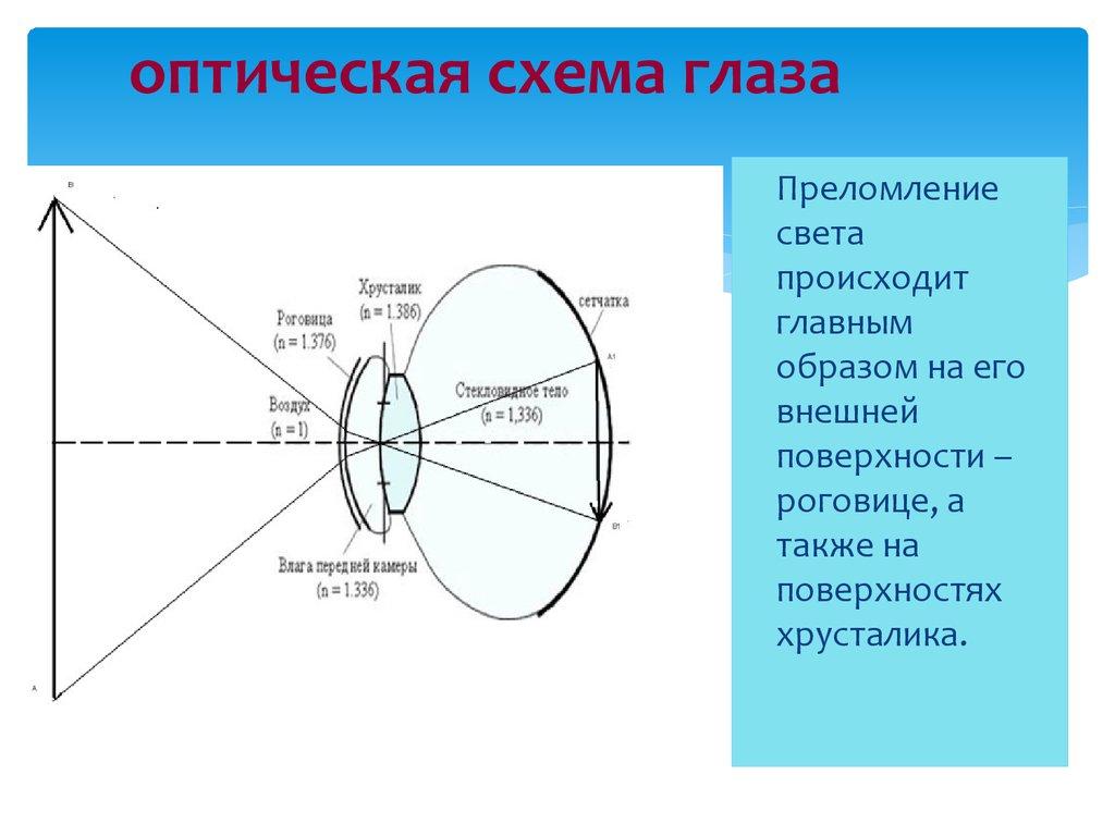 дальтонизм схема передачи