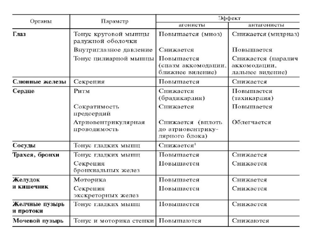 Блокаторы м холинорецепторов классификация и характеристика препаратов