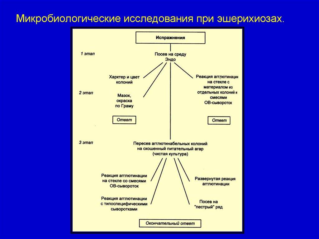 Эндотоксин