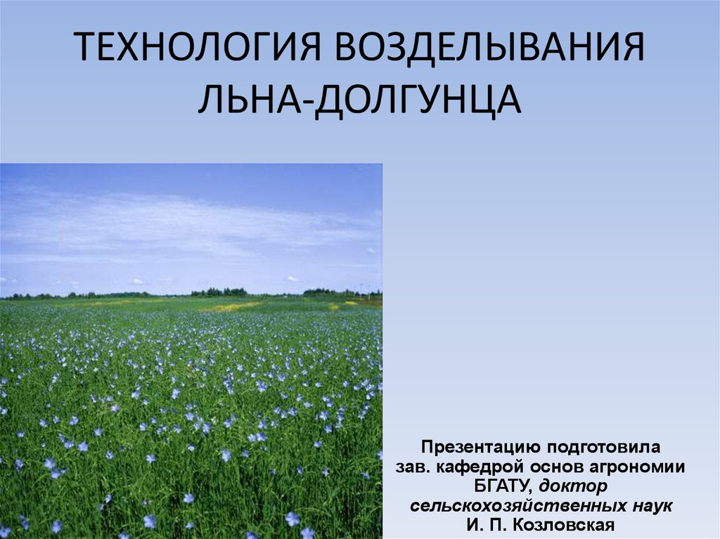 Лен технология выращивания 41