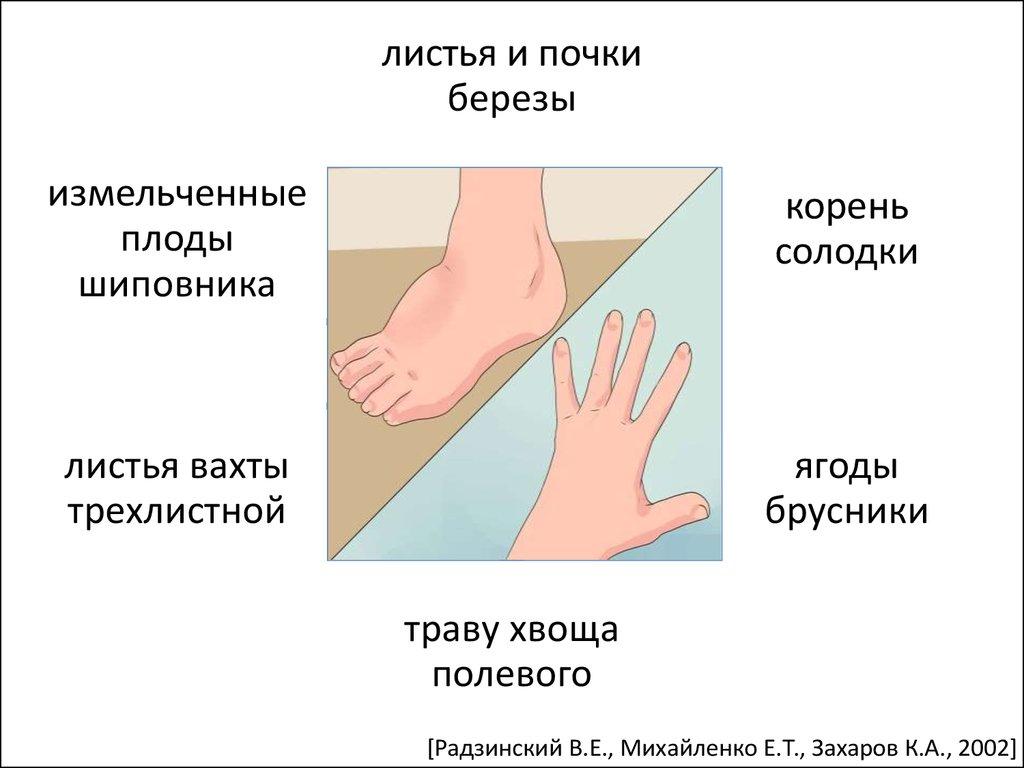 средства лечения паразитов в организме