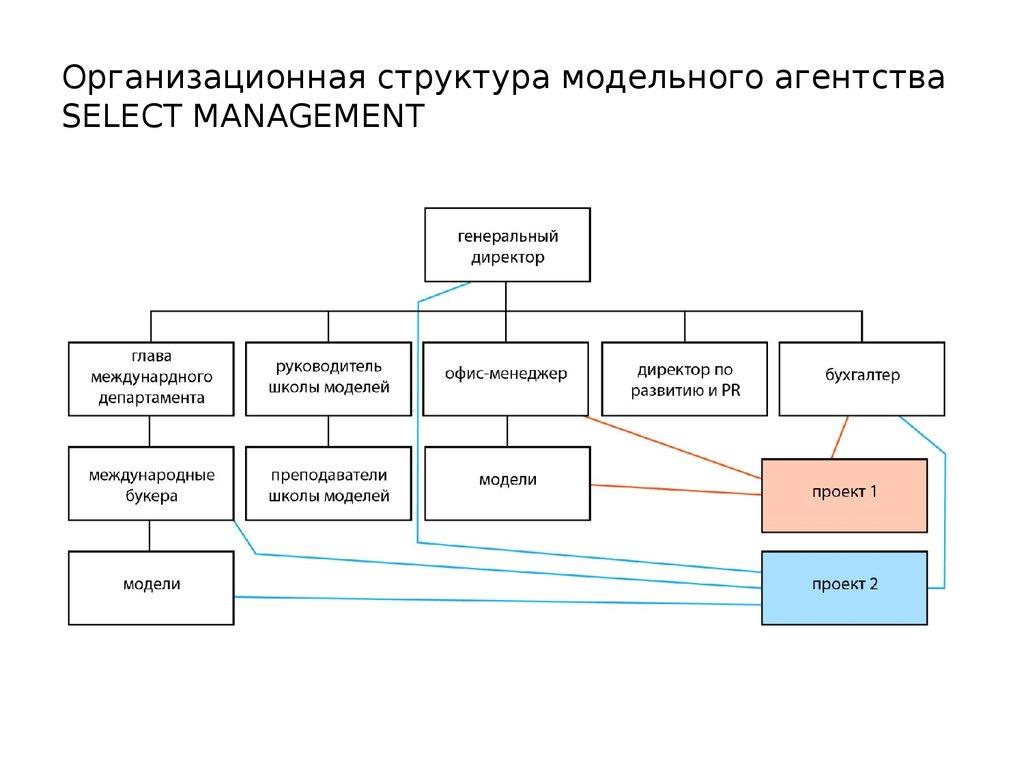 Структурная схема фирмы