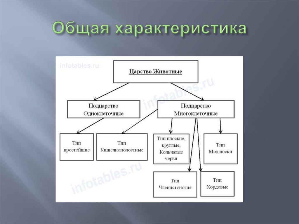 паразиты в мышцах человека симптомы и лечение