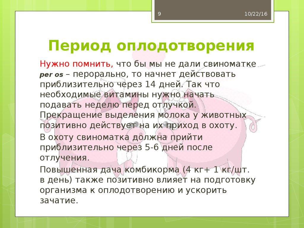 online repetitorium geriatrie geriatrische grundversorgung