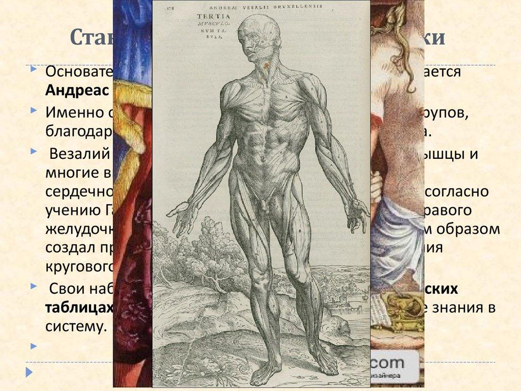 Медицина возрождение