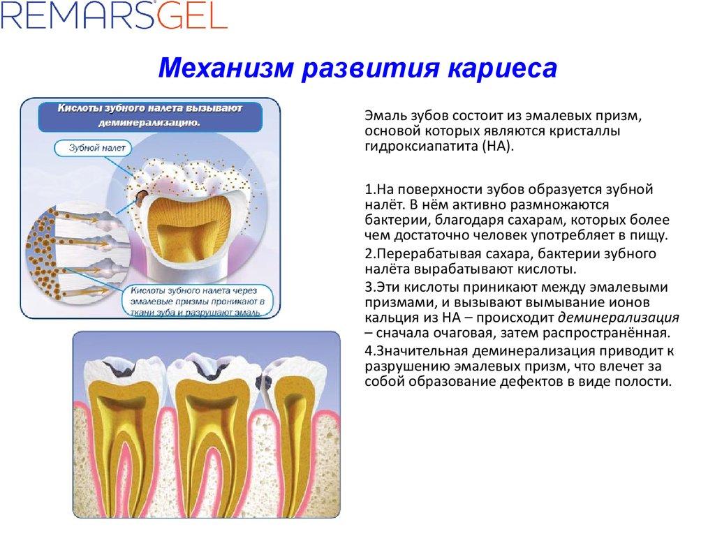 Эмаль зубов регенерация